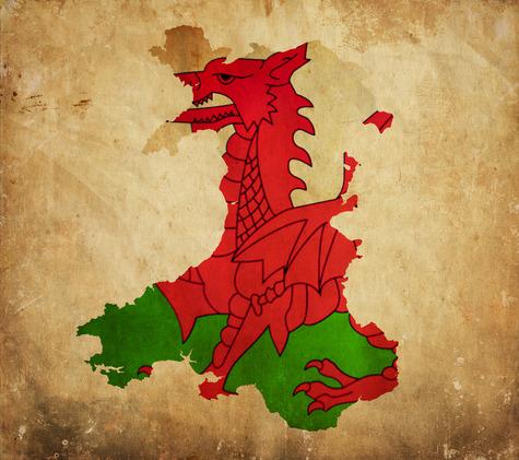 Welsh Translation Services