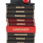 Professional Language Services in 10 languages