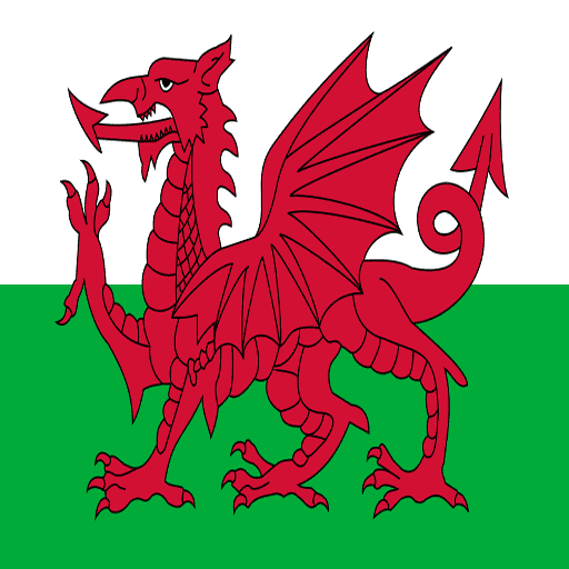 Qualified and experienced Welsh to English and English to Welsh translators and interpreters.