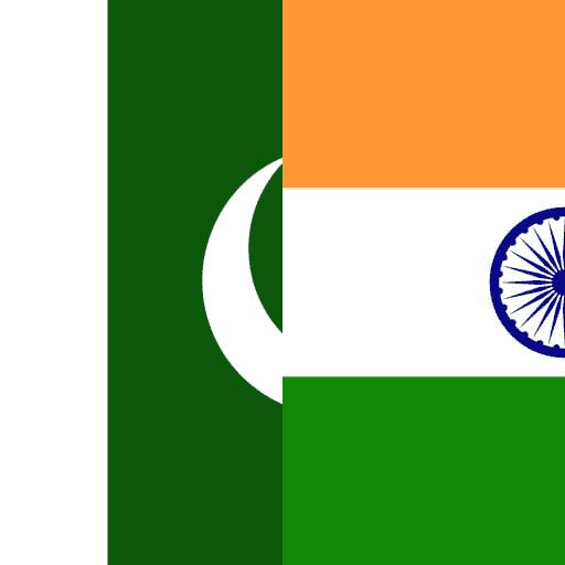 Punjabi by professional online translators.