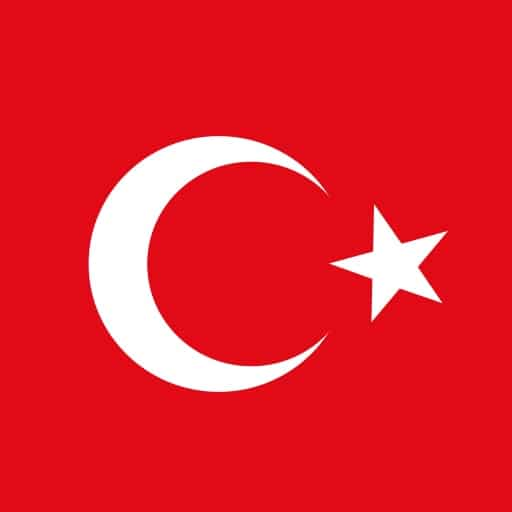 Turkish to English and English to Turkish translations compliant with ISO 9001 standards.